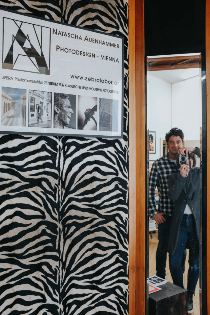 Zebra, Analog, Natascha Auenhammer, Wien, Fotografie, Workshop,